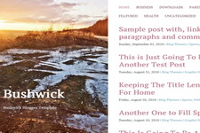 Bushwick Blogger Theme